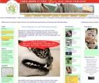Tierfreund.com im Test: Details, Kosten & Meinungen